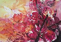 Carmen-Kroese-Pflanzen-Blumen