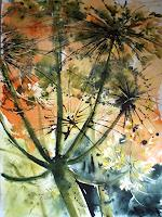 C. Kroese, Wiesenblumen aus der Froschperspektive