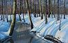 K. Birk, Bach im Winter (Zabeltitz)