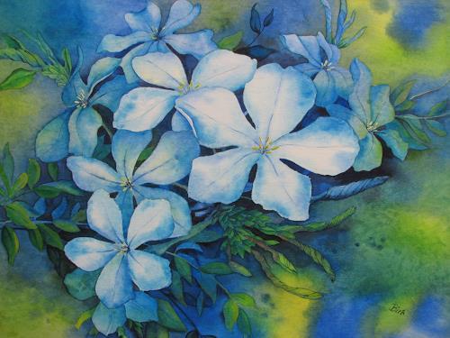 Kerstin Birk, Bleiwurz, Pflanzen: Blumen, Stilleben, Realismus, Neuzeit