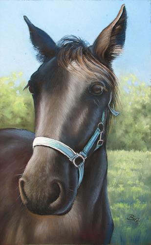 Kerstin Birk, Porträt eines Pferdes, Tiere: Land, Diverse Tiere, Realismus, Neuzeit