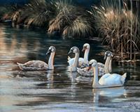 Kerstin-Birk-Tiere-Wasser-Natur-Wasser-Neuzeit-Realismus