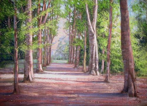 Kerstin Birk, Buchenallee, Landschaft: Sommer, Natur: Wald, Realismus, Neuzeit