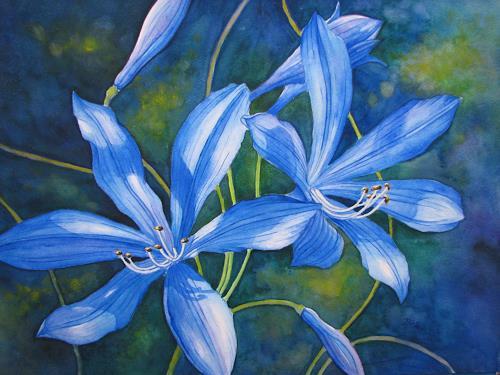 Kerstin Birk, Schmucklilien, Pflanzen: Blumen, Realismus