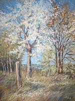 Kerstin-Birk-Pflanzen-Baeume-Landschaft-Fruehling-Neuzeit-Realismus