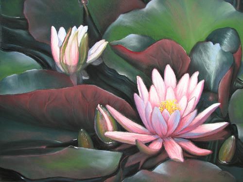 Kerstin Birk, Seerosen, Pflanzen: Blumen, Natur: Wasser, Realismus