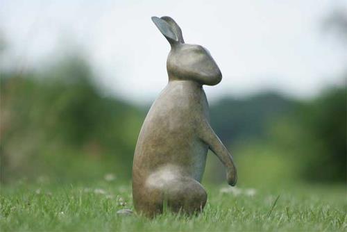 Mark Dedrie, Rabbit, Tiere: Land, Diverse Tiere, Realismus