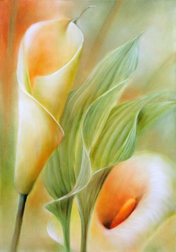 Annette Schmucker, Callas, Pflanzen: Blumen, Pflanzen: Blumen, Gegenwartskunst, Expressionismus