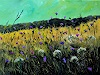 pol ledent, Wild flowers