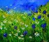 pol ledent, Blue cornflowers and daisies