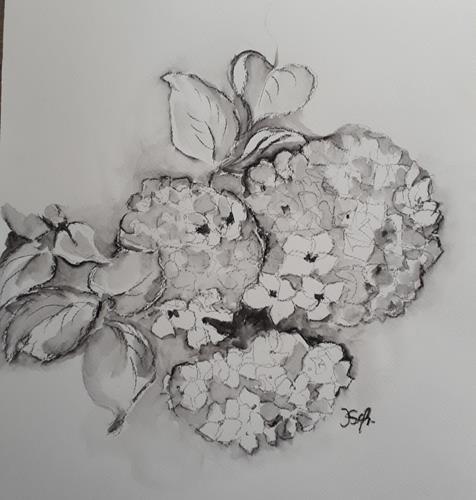 Ingeborg Schnöke, Hortensien, Pflanzen, Abstrakte Kunst