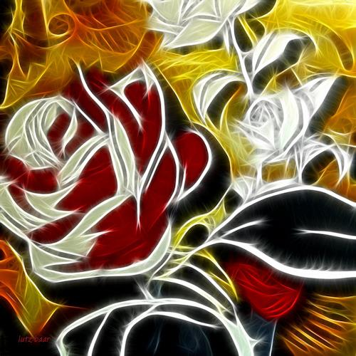 Lutz Baar, Roses, fire and ice, Dekoratives, Pflanzen: Blumen, Moderne, Expressionismus