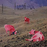 Walter-Lehmann-Zeiten-Fruehling-Tiere-Land