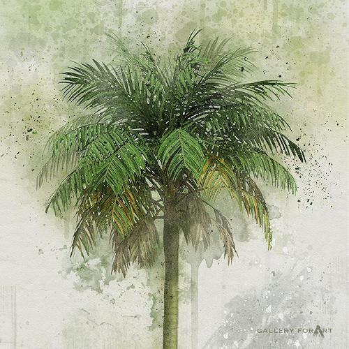 Artur Wasielewski, PALM GREEN BEAUTY-01, Pflanzen: Palmen, Landschaft: Tropisch, Moderne