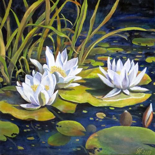 Am Seerosenteich Von Hofmannsart Natur Wasser Pflanzen Blumen