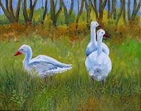 hofmannsART-Tiere-Land-Moderne-Impressionismus