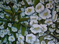 hofmannsART-Pflanzen-Baeume-Zeiten-Fruehling-Moderne-Impressionismus