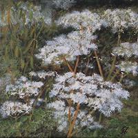 Guenther-Hofmann-Pflanzen
