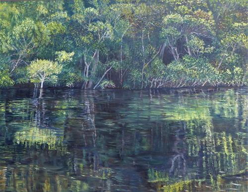 Theresia Züllig, Amazonaserlebnis, Natur: Wasser, Diverse Landschaften, Naturalismus
