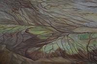 Theresia-Zuellig-Natur-Erde-Landschaft-Ebene-Moderne-Naturalismus