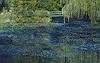 Theresia Züllig, Besuch in Monets Garten