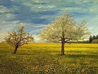 Theresia-Zuellig-Landschaft-Fruehling-Natur-Erde-Moderne-Impressionismus