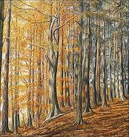 T. Züllig, Im Herbstmischwaldwald