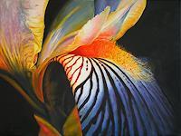 S. Achrem, Iris 2