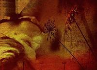 Enido Valesca, Dreaming