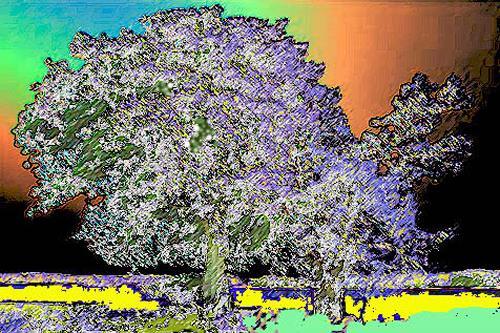 Günter Otto von Deyen, Prachtbaum, Landschaft: Ebene, Neo-Expressionismus, Expressionismus
