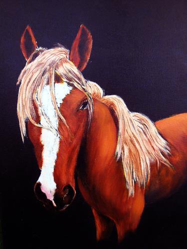 Karin Müller, auf dem Rücken eines Pferdes...., Tiere: Land