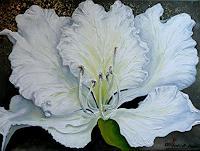 Anne-Waldvogel-Pflanzen-Blumen-Dekoratives-Moderne-Impressionismus