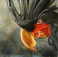 A. Waldvogel, Grau-Papagei