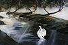 A. Waldvogel, Schwan im Morgennebel
