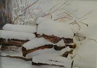 Anne Waldvogel, Holzstoß unter Schnee