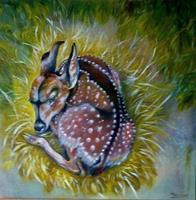 Anne-Waldvogel-Natur-Erde-Tiere-Land-Moderne-Abstrakte-Kunst