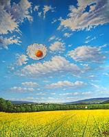 Wolfgang-Rose-Landschaft-Natur-Moderne-Fotorealismus