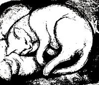 Jens-Jacobfeuerborn-Tiere-Land-Diverse-Tiere-Moderne-Pop-Art