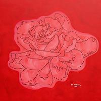 Jens-Jacobfeuerborn-Pflanzen-Blumen-Poesie