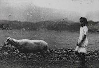 Panajota-Tserkesi-Menschen-Kinder-Tiere-Land-Moderne-Fotorealismus