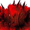 j.p.yef, red tulips