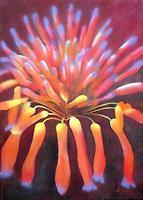 KronArt - Leopoldina Kronberger, Blüte von Aloevera