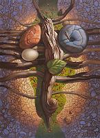 Stefan-Ambs-Natur-Wald-Natur-Erde-Moderne-Symbolismus