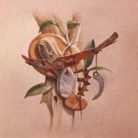 Stefan-Ambs-Diverse-Pflanzen-Natur-Gestein-Neuzeit-Realismus