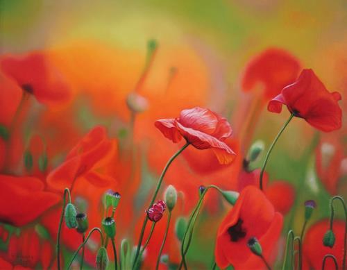Ralf Vieweg, Mohnblumen, Pflanzen: Blumen, Fotorealismus, Moderne
