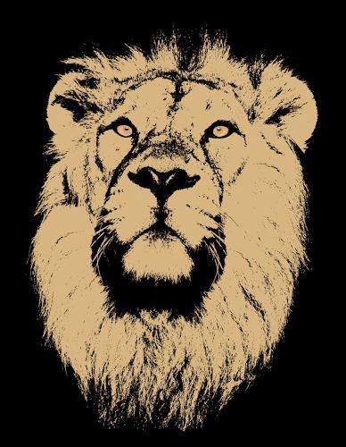 Liona Toussaint, LION, Tiere: Land, Dekoratives, Gegenwartskunst