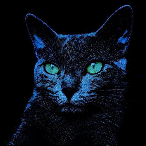 Liona Toussaint, BLUE CAT, Tiere: Land, Mythologie, Abstrakte Kunst, Abstrakter Expressionismus