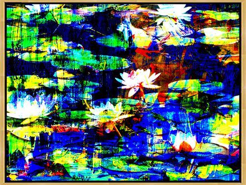 Lee Eggstein, Seerosen, Pflanzen: Blumen, Natur: Wasser, Abstrakte Kunst