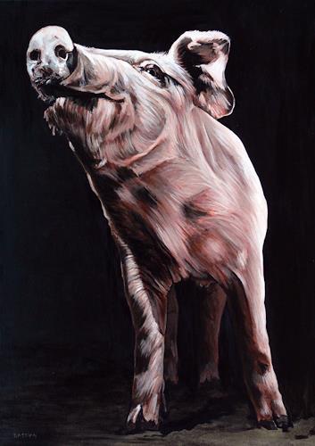 Clara Bastian, Schwein, Tiere: Land, Essen, Realismus, Abstrakter Expressionismus