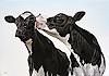 Clara Bastian, Zwei Kuhe